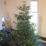 VTIS Weihnachtsbaum 2013